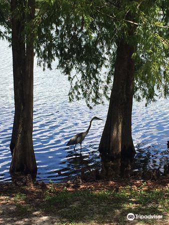 Greenwood Urban Wetlands2