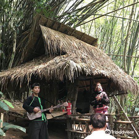 Xishuangbanna Rainforest Valley4