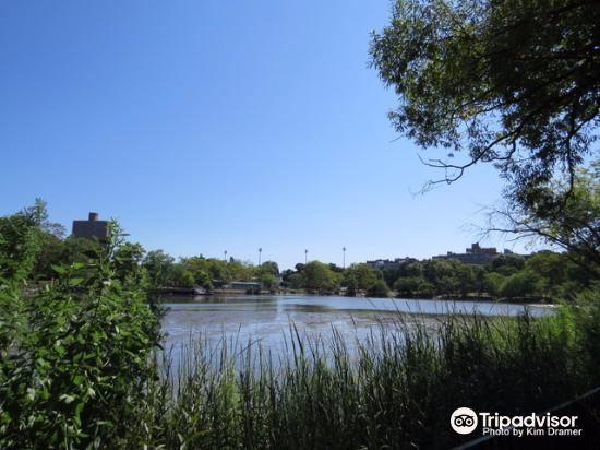 伍德山公園2