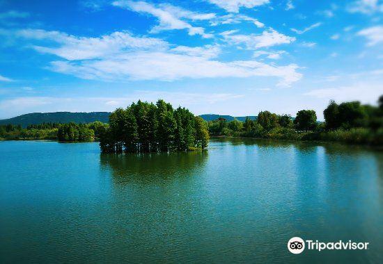 Shanghu Lake1