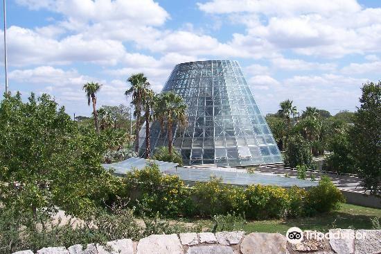 聖安東尼奧植物園1