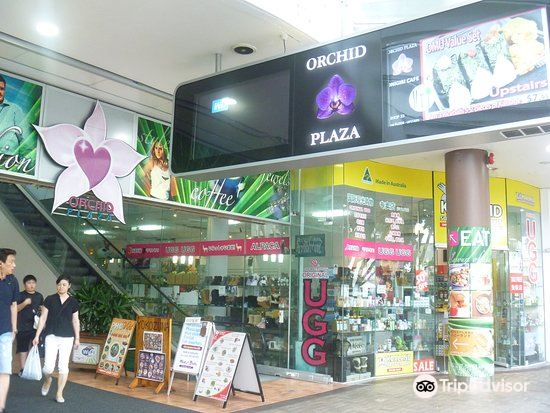 Orchid Plaza2