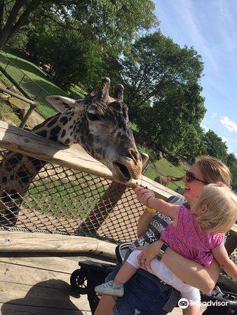 克利夫蘭動物園2