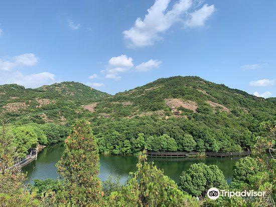Baoyan Ecological Sightseeing Garden3