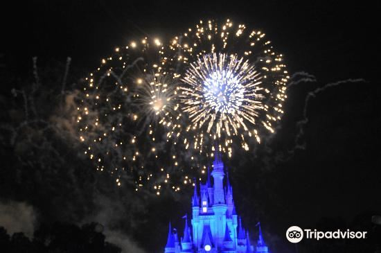Happily Ever After Fireworks4