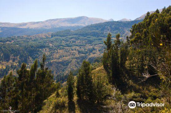 Parque Nacional Tunari2