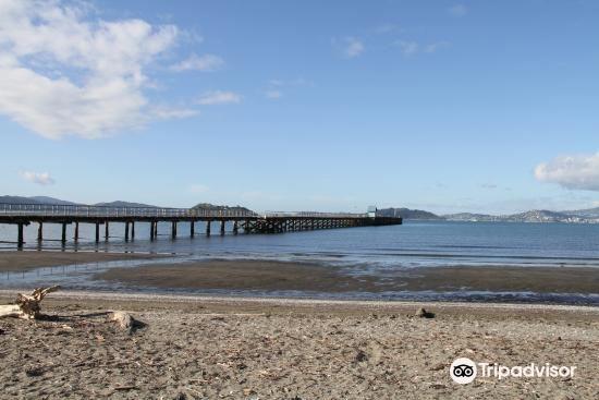 Petone海灘3