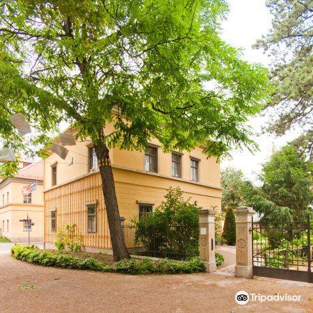 Liszt Haus2