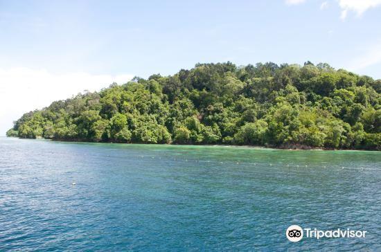 婆羅洲大堡礁4
