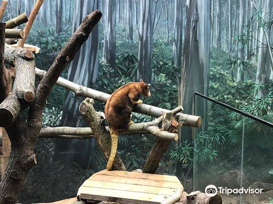 克利夫蘭動物園3