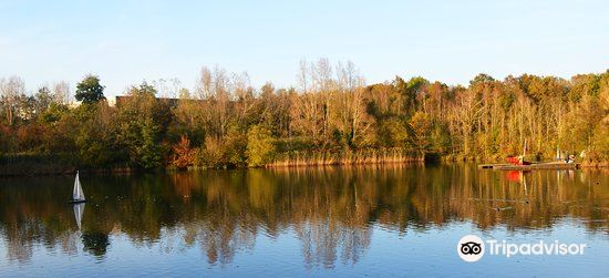 Southwater Country Park1