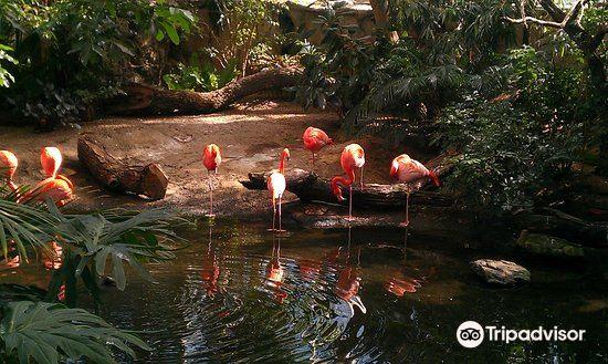 國家鳥類公園1