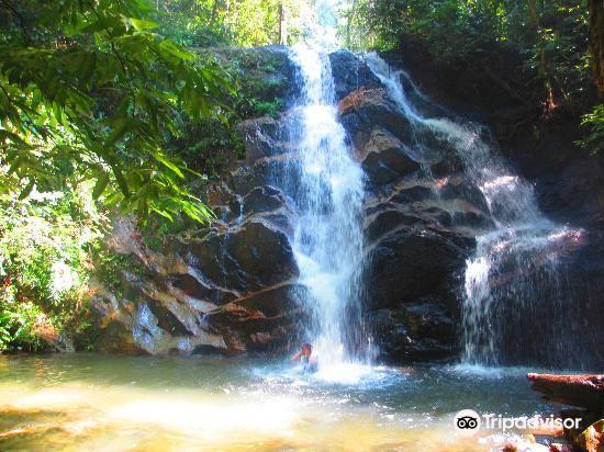 甘清雨林瀑布2