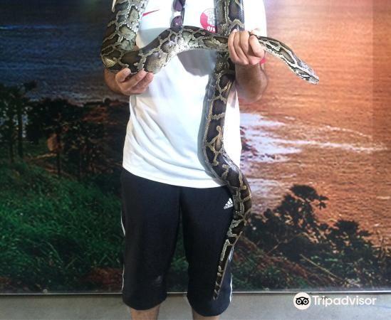 Phuket Cobra Show and Snake Farm2