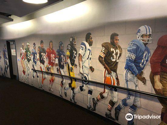 Pro Football Hall of Fame1
