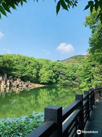Baoyan Ecological Sightseeing Garden4