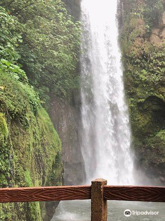 La Paz Waterfall and Peace Lodge Gardens2