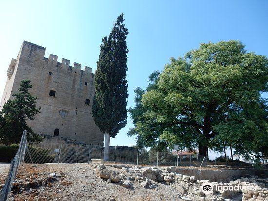 Kolossi Castle3