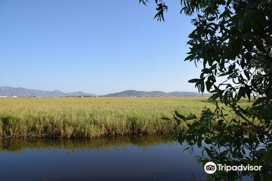 Townsville Town Common Conservation Park3
