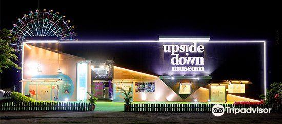 Upside Down Museum4