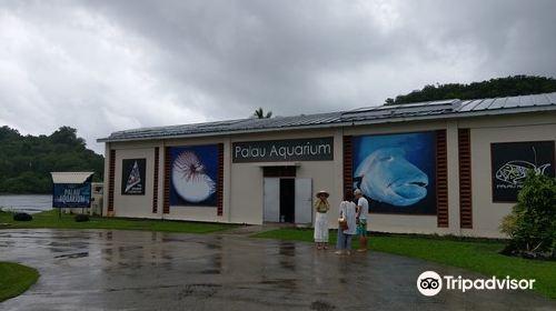 Palau Aquarium
