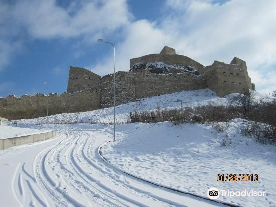 Cetatea Rupea3
