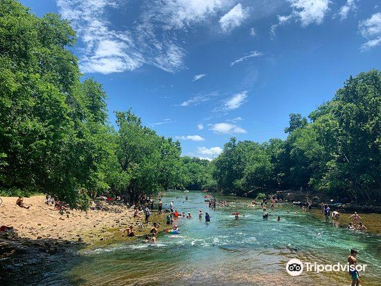 巴頓春池 Barton Springs Pool1