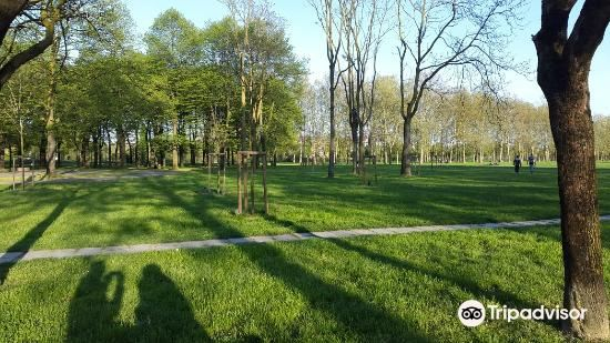 Parco di Trenno4