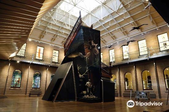 塔斯馬尼亞博物和藝術館4