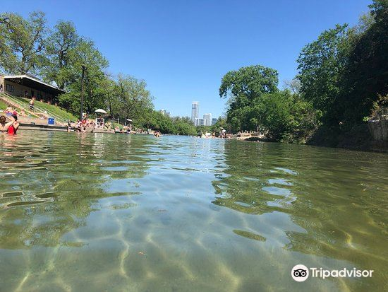 巴頓春池 Barton Springs Pool4