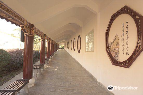 大覺禪寺4