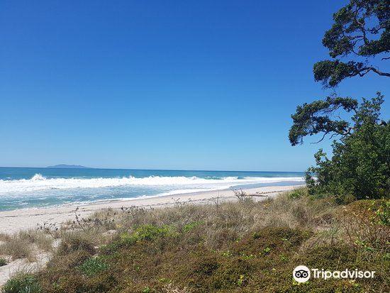 Whiritoa Beach1