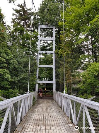 Suspension Bridge2
