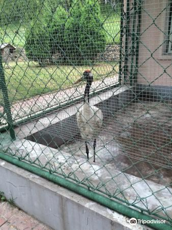 번시 동물원 - 북서문 1번 입구