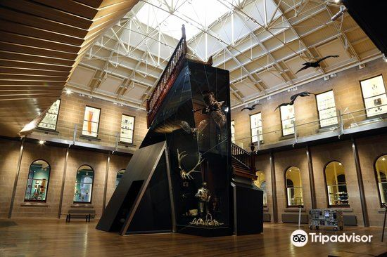塔斯馬尼亞博物和藝術館3