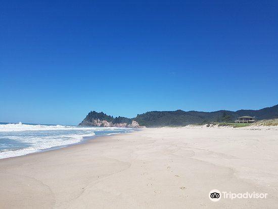 Whiritoa Beach3