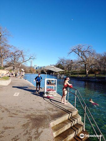 巴頓春池 Barton Springs Pool3
