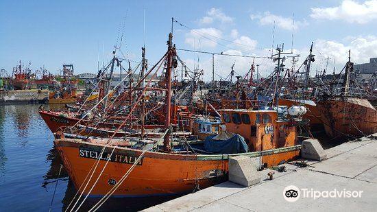 Puerto de Mar del Plata3