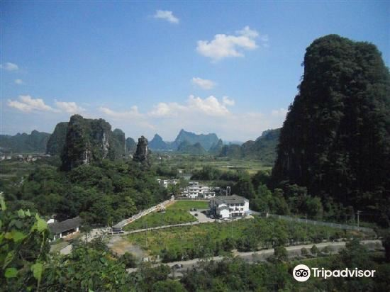 Guangxi Guilin Forest Park2