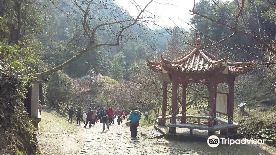 Nanxiong Museum1