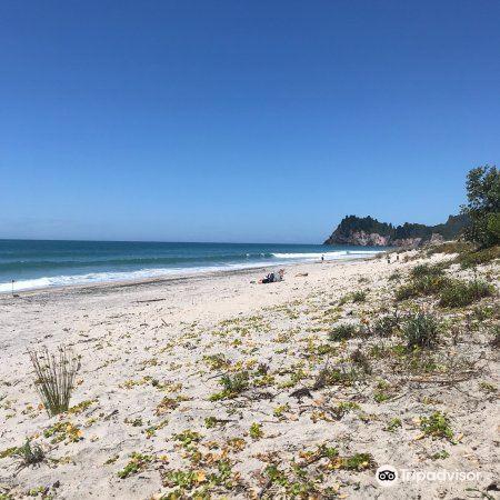 Whiritoa Beach4