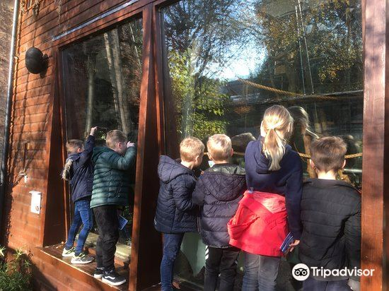 Bristol Zoo Gardens1