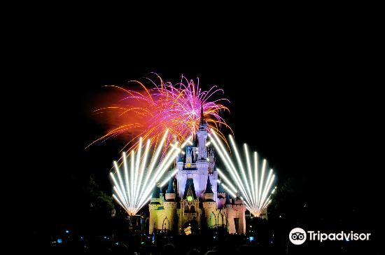 Happily Ever After Fireworks3