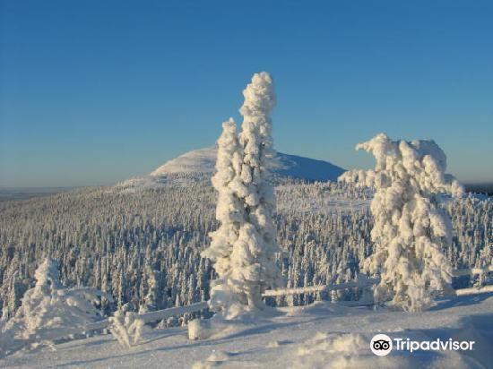 聖山滑雪中心