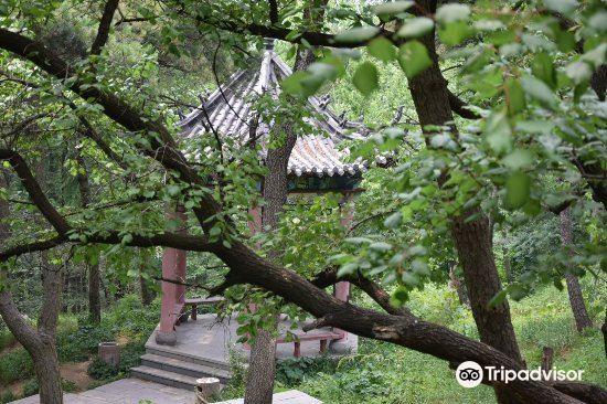 노산국가삼림공원1