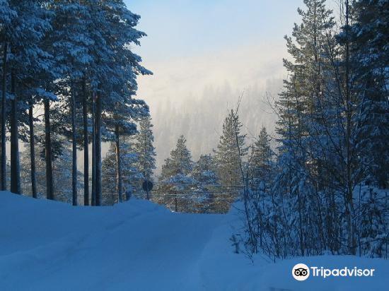 聖山滑雪中心2