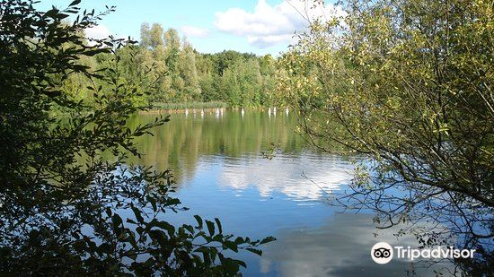 Southwater Country Park2