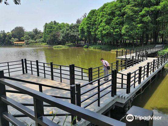Luhu Park3
