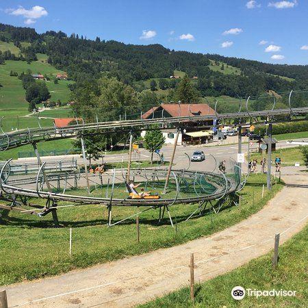 Alpsee Bergwelt3