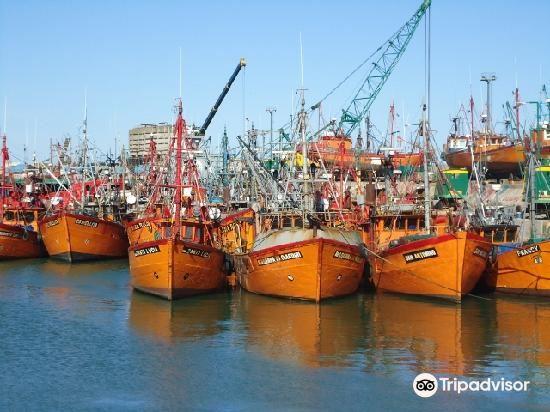 Puerto de Mar del Plata1